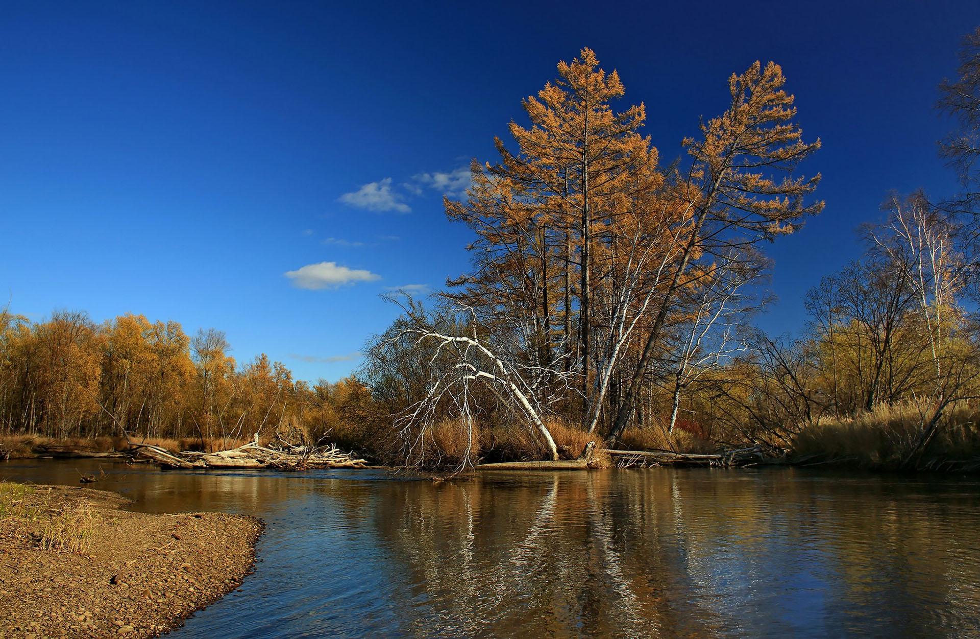 река Тугур